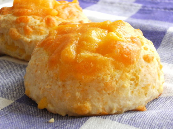 Sage-Derby-Cheese-Scones